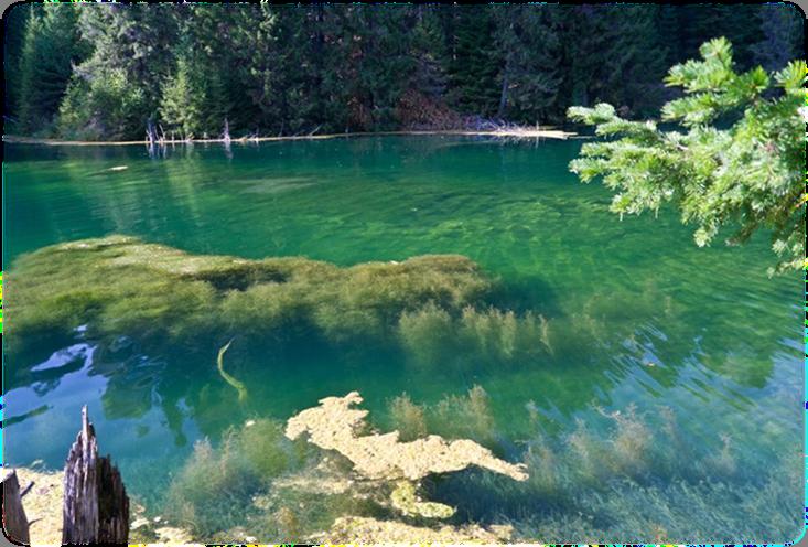 Бошляковское озеро